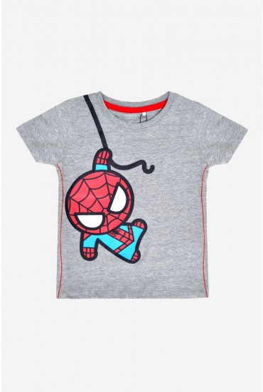Kawaii Boys Spiderman Tee in Grey