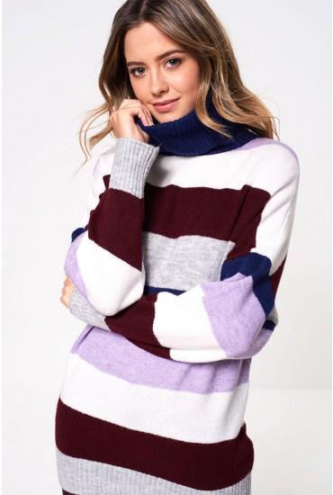 Monica Roll Neck Knit Jumper in Stripe