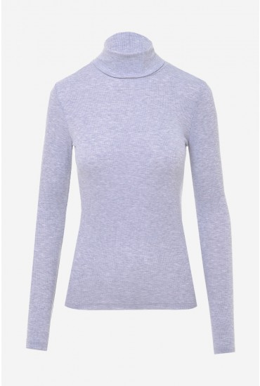 Ganie Ribbed Roll Neck Top in Light Grey