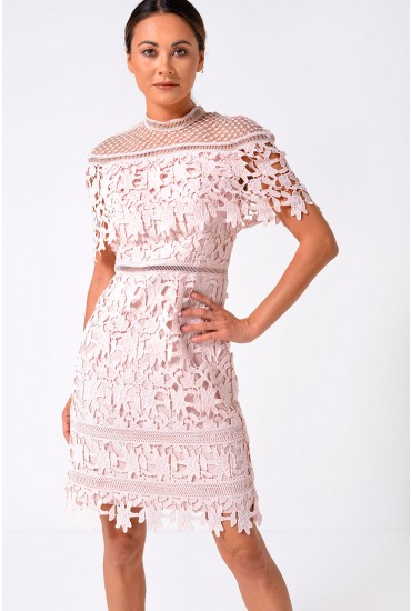 Rebeka Crochet Dress in Blush