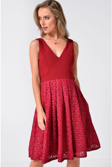 Lenox Floral Embroidered Skater Dress in Burgundy